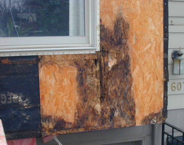 All About Wall Rot - GreenBuildingAdvisor on split mobile home, white mobile home, cool mobile home, good mobile home, empty mobile home, wood mobile home, river mobile home, burnt mobile home, rocket mobile home, love mobile home, small mobile home, red mobile home, cast mobile home, smelly mobile home, big mobile home, filthy mobile home, ugly mobile home, bad mobile home,