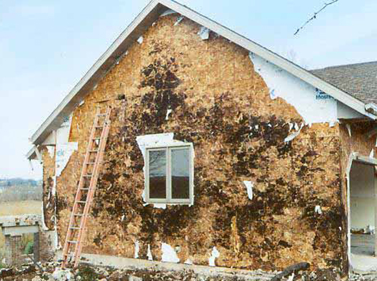 All about wall rot greenbuildingadvisor for What size osb for exterior walls